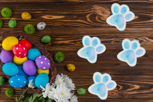 Easter Bunny Paw Print Removable Sticker Decals